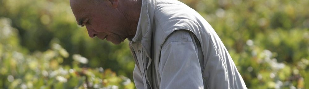 Dégustation avant la vendange - Aubert de Villaine (photo DRC)