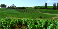 appell_Gaillac