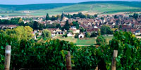 appell_chablis
