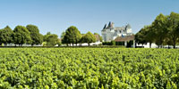 appell_chinon