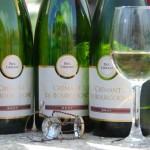Crémant de Bourgogne de Paul Chollet