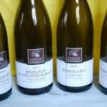 Quelques crus du domaine Parigot - Savigny, Chassagne, ¨Pommard...