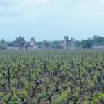 Vignoble du Clos de Vougeot