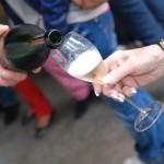 degustation de champagne chez goulin-roualet à sacy