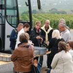 dégustation dans les vignes à villedommange en champagne