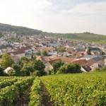 vue du village de verzenay, depuis le phare