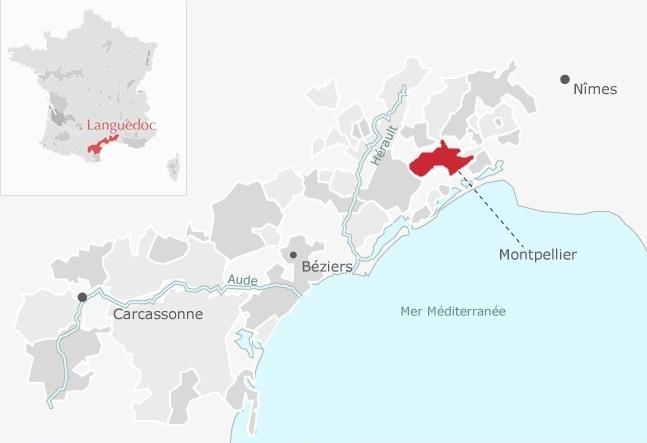 Saint-Georges d'Orques, dans le vignoble du Languedoc - © Avis-Vin Le Figaro