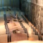 Barriques du château de Fosse-Sèche à Brossay