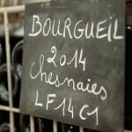 Bourgueil Les Chesnaies - Lamé delisle Boucard