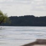 Le fleuve-roi... Promenade en gabarre sur la loire