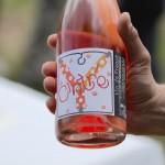 """""""Cintré"""" - Vin de France de Laurent Herlin à Chouzé-sur-Loire"""