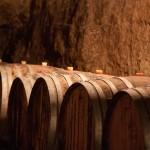 Cave du Clos des Quarterons - Domaine Amirault