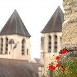 Eglise collégiale de Saint-Mexme à Chinon