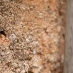 Sous-couches du sol du château de Fosse-Sèche à Brossay dans le Saumurois
