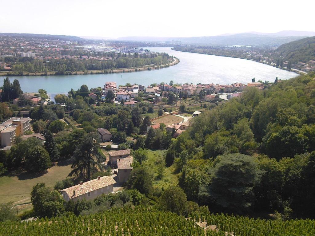 condrieu et le Rhône